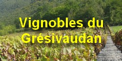 logo_vignobles_250_125_1