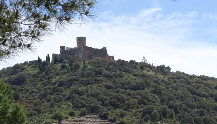 2019 Argelès (31)